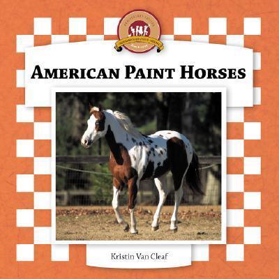 American Paint Horses als Buch
