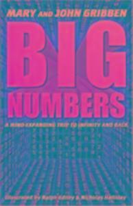 Big Numbers als Taschenbuch