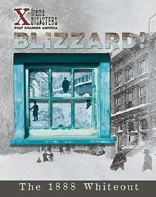 Blizzard! als Buch