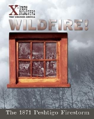 Wildfire! als Buch