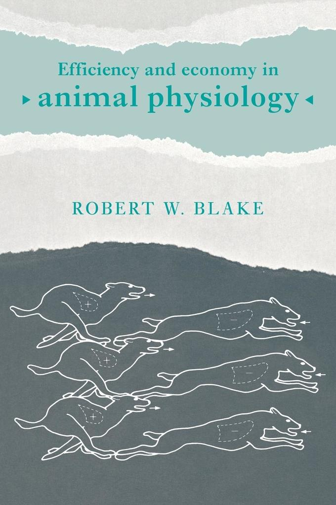 Efficiency and Economy in Animal Physiology als Buch