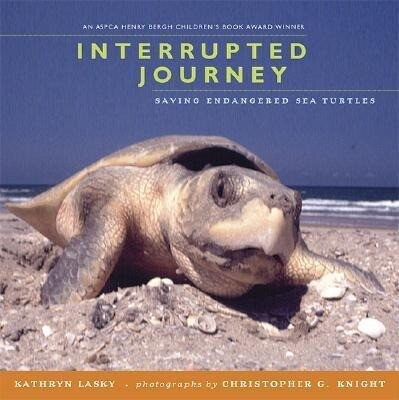 Interrupted Journey: Saving Endangered Sea Turtles als Taschenbuch