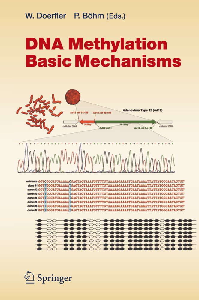 DNA Methylation: Basic Mechanisms als Buch