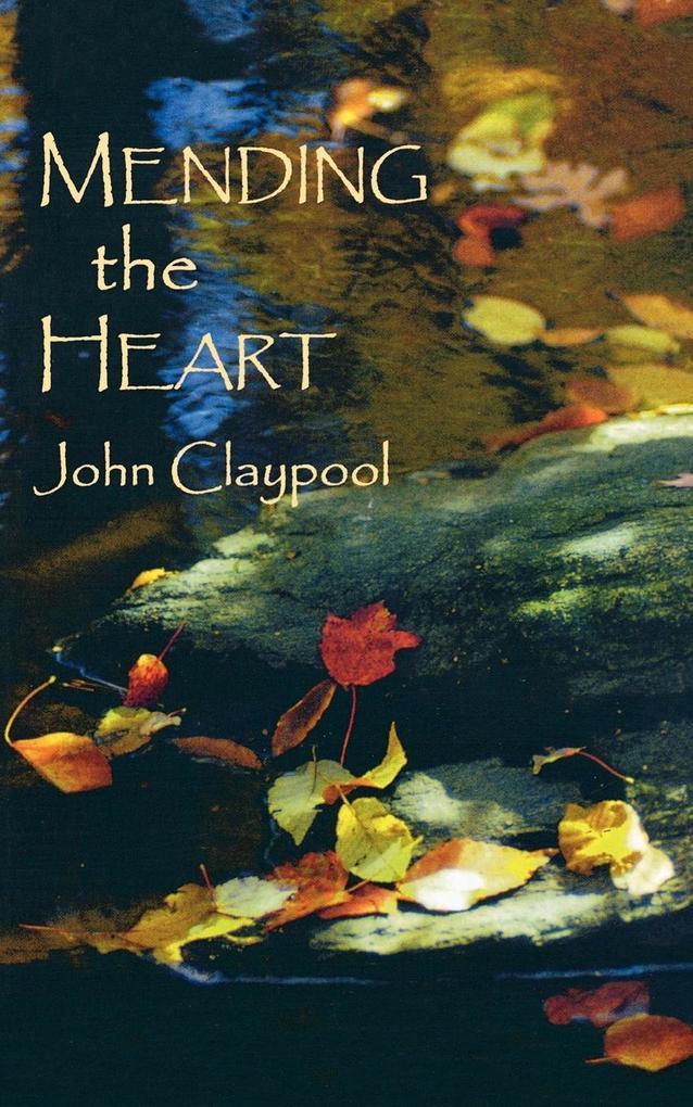 Mending the Heart als Taschenbuch