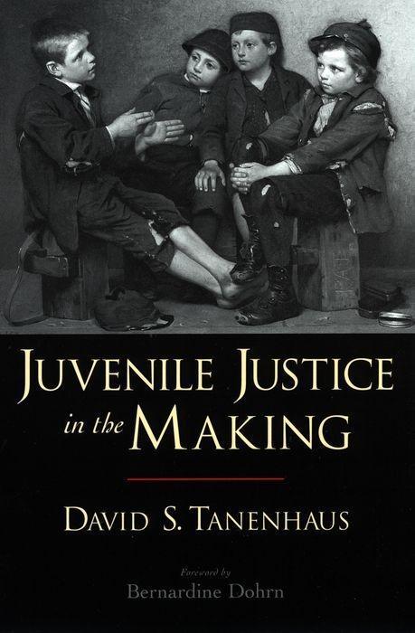 Juvenile Justice in the Making als Taschenbuch