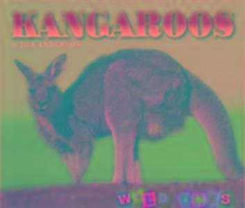 Kangaroos als Taschenbuch