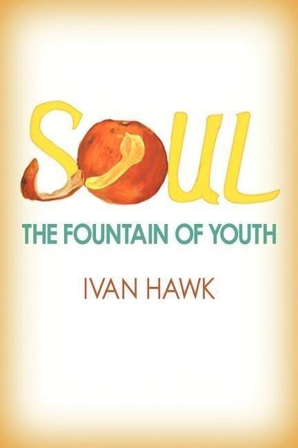 Soul als Taschenbuch