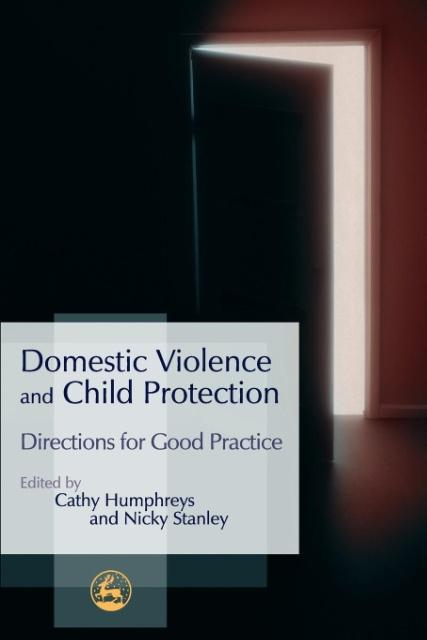 Domestic Violence and Child Protection als Buch