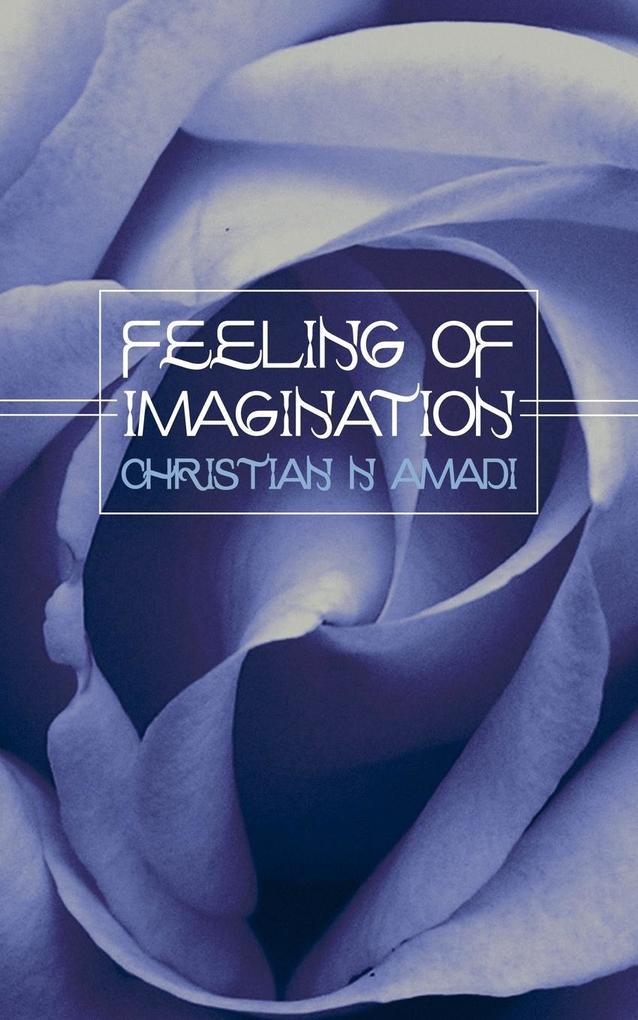 Feeling of Imagination als Taschenbuch