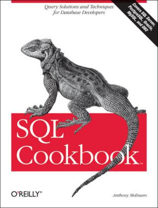 SQL Cookbook als Buch