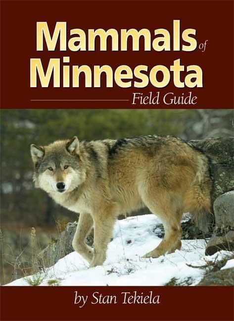 Mammals of Minnesota Field Guide als Taschenbuch