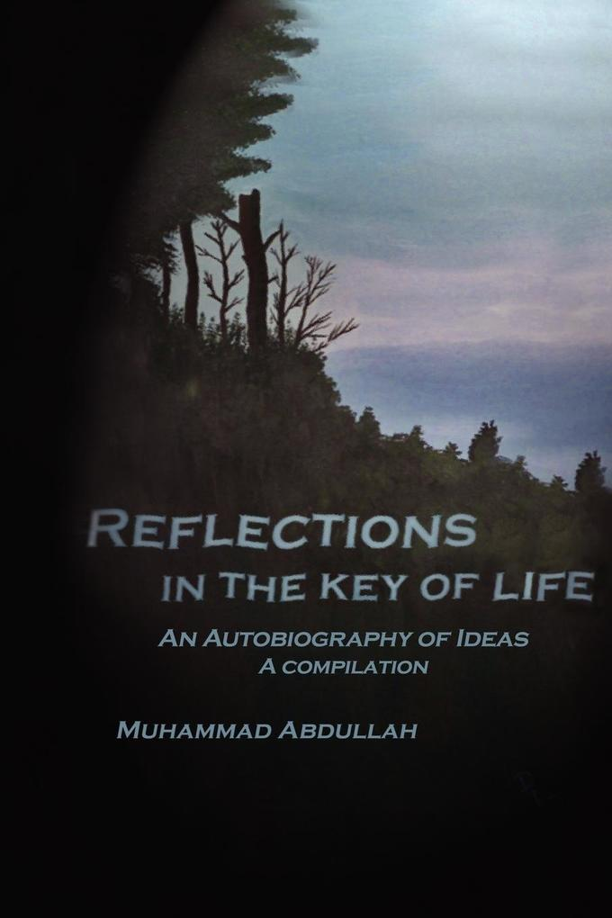 Reflections in the Key of Life als Taschenbuch