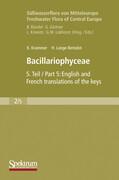 Süßwasserflora von Mitteleuropa, Bd. 02/5: Bacillariophyceae