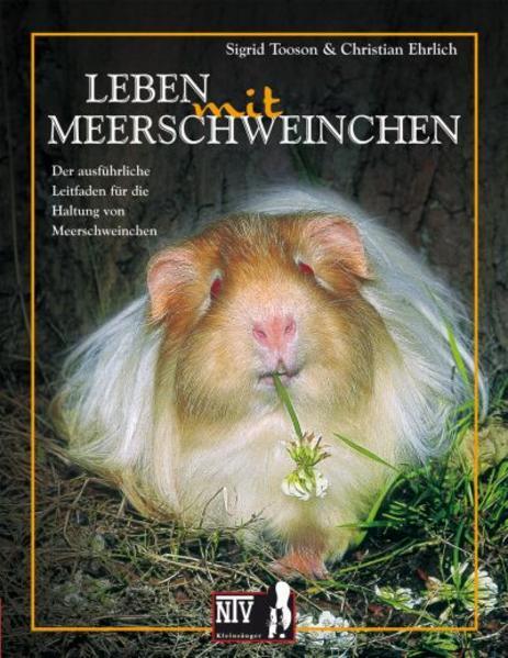 Leben mit Meerschweinchen als Buch
