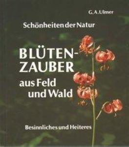 Blütenzauber aus Feld und Wald als Buch