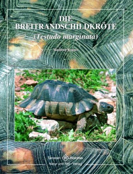 Breitrandschildkröte als Buch