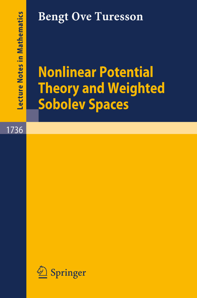 Nonlinear Potential Theory and Weighted Sobolev Spaces als Buch