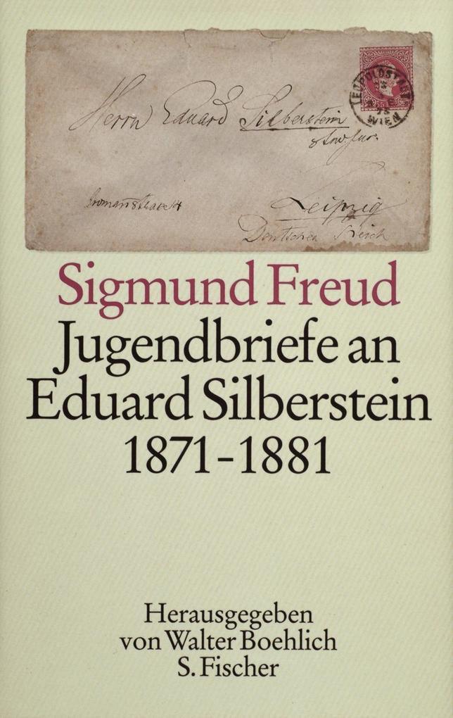 Jugendbriefe an Eduard Silberstein 1871 - 1881 als Buch
