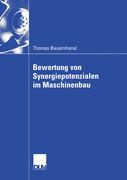Bewertung von Synergiepotenzialen im Maschinenbau