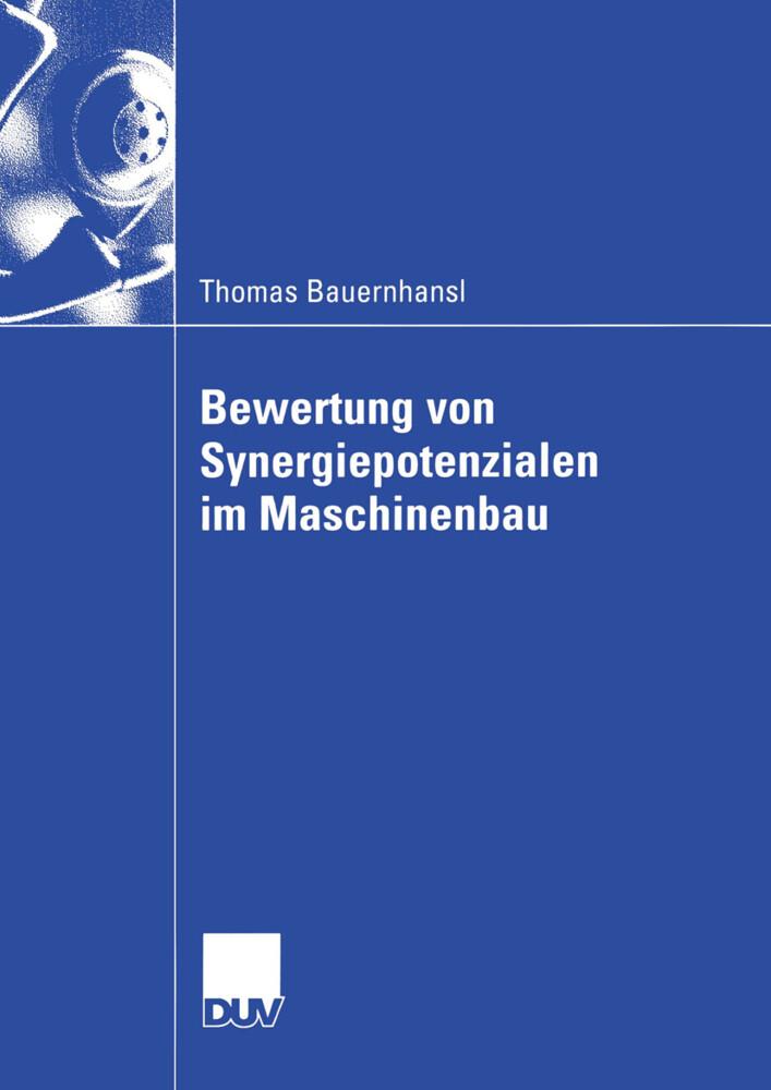 Bewertung von Synergiepotenzialen im Maschinenbau als Buch