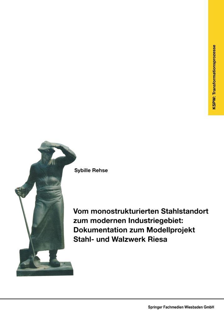 Vom monostrukturierten Stahlstandort zum modernen Industriegebiet: Dokumentation zum Modellprojekt Stahl- und Walzwerk Riesa als Buch