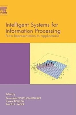 Intelligent Systems for Information Processing: From Representation to Applications als Buch