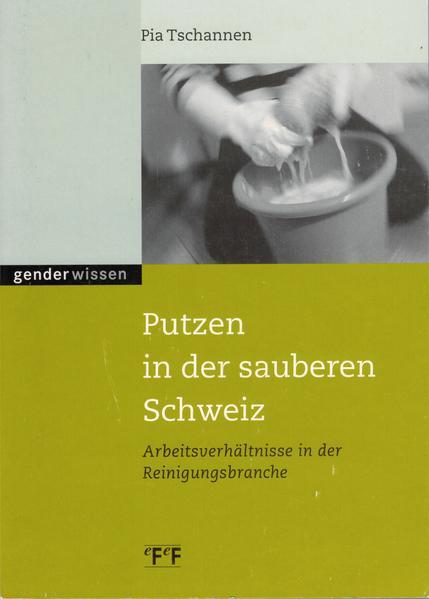 Putzen in der sauberen Schweiz als Buch