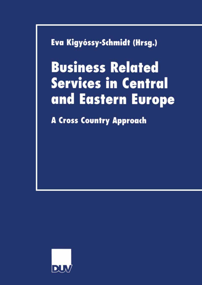Business Related Services in Central and Eastern Europe als Buch