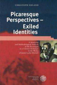 Picaresque Perspectives - Exiled Identities als Buch