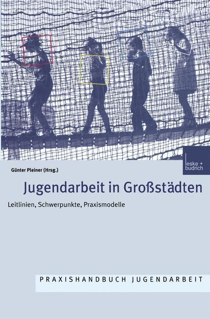 Jugendarbeit in Großstädten als Buch