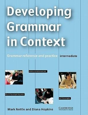 Developing Grammar in Context Intermediate Without Answers: Grammar Reference and Practice als Buch