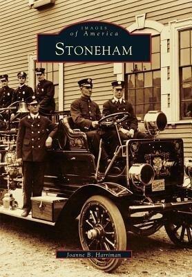 Stoneham als Taschenbuch