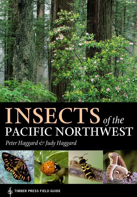 Insects of the Pacific Northwest als Taschenbuch