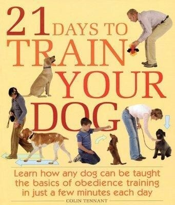 21 Days to Train Your Dog: Learn How Any Dog Can Be Taught the Basics of Obedience Training in Just a Few Minutes Each Day als Taschenbuch