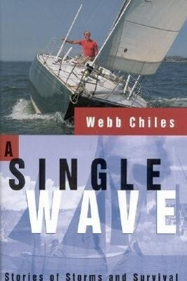 A Single Wave: Stories of Storms and Survival als Buch
