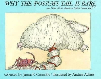 Why the Possum's Tail is Bare als Taschenbuch