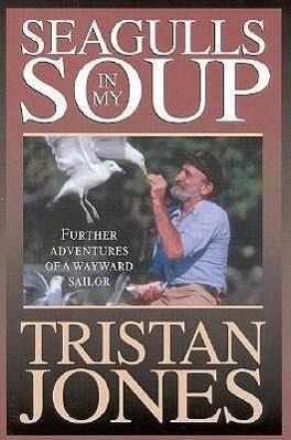 Seagulls in My Soup als Taschenbuch