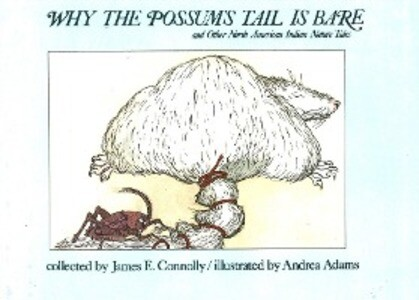 Why Possums Tail Is Bare als Buch
