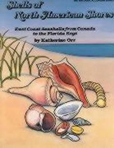Shells of North American Shores als Taschenbuch