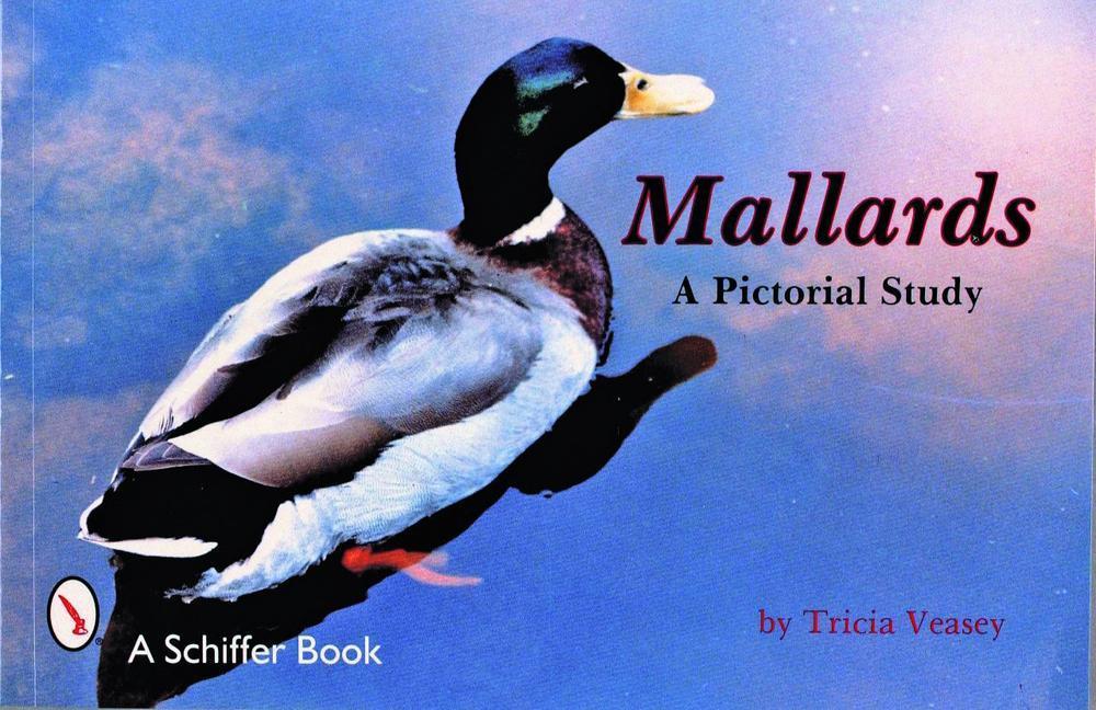 Mallards als Taschenbuch