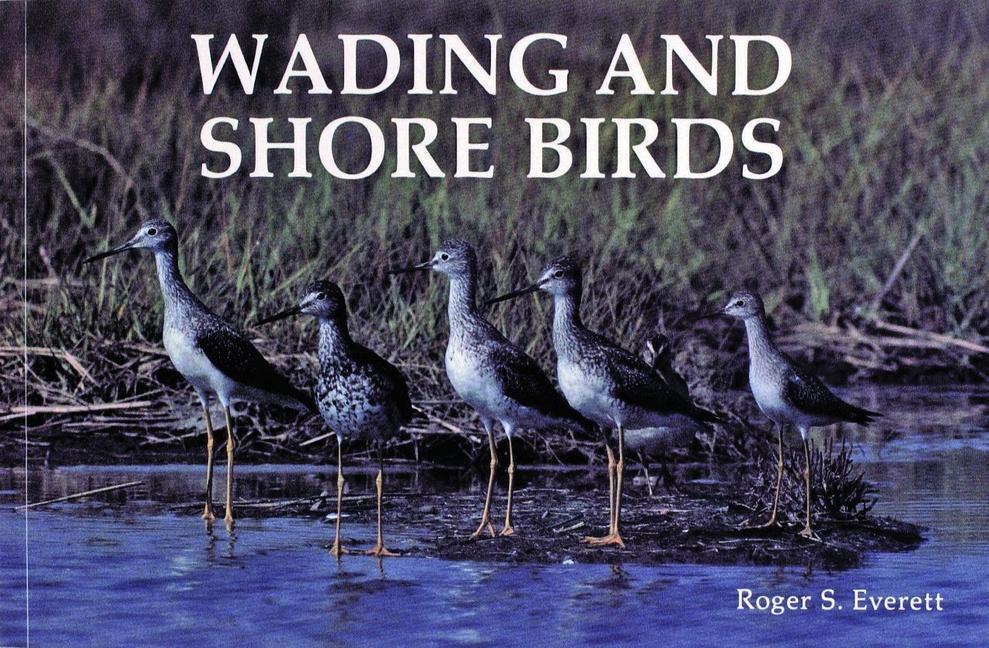 Wading and Shore Birds als Taschenbuch