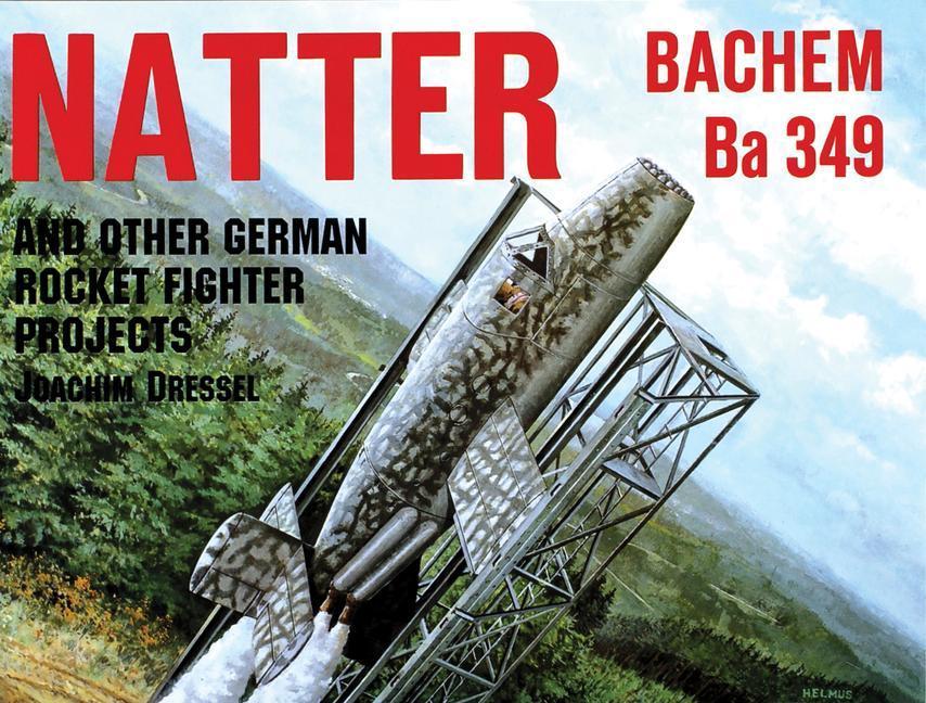 Natter & Other German Rocket Jet Projects als Taschenbuch