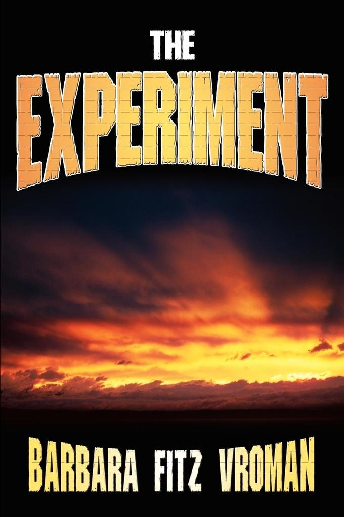 The Experiment als Taschenbuch