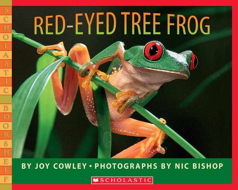 Red-Eyed Tree Frog als Taschenbuch