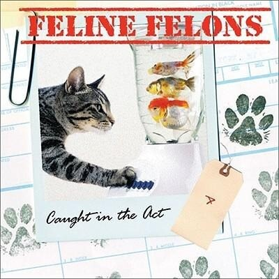 Feline Felons: Caught in the ACT als Buch