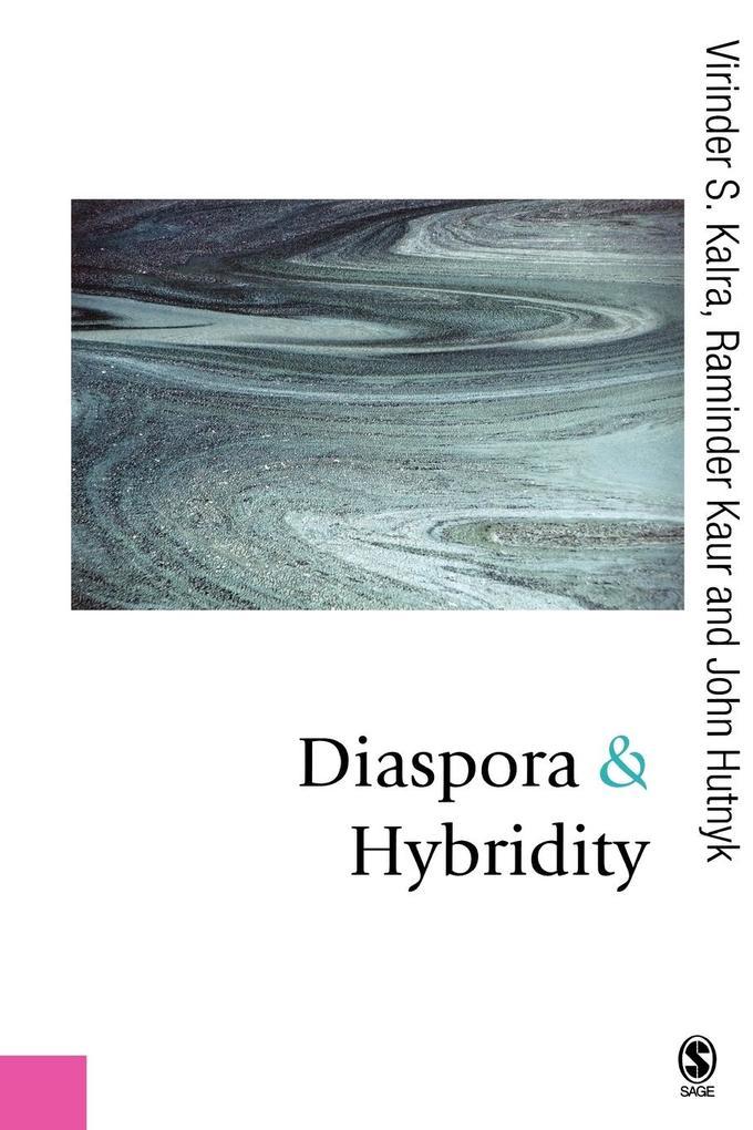 Diaspora and Hybridity als Taschenbuch