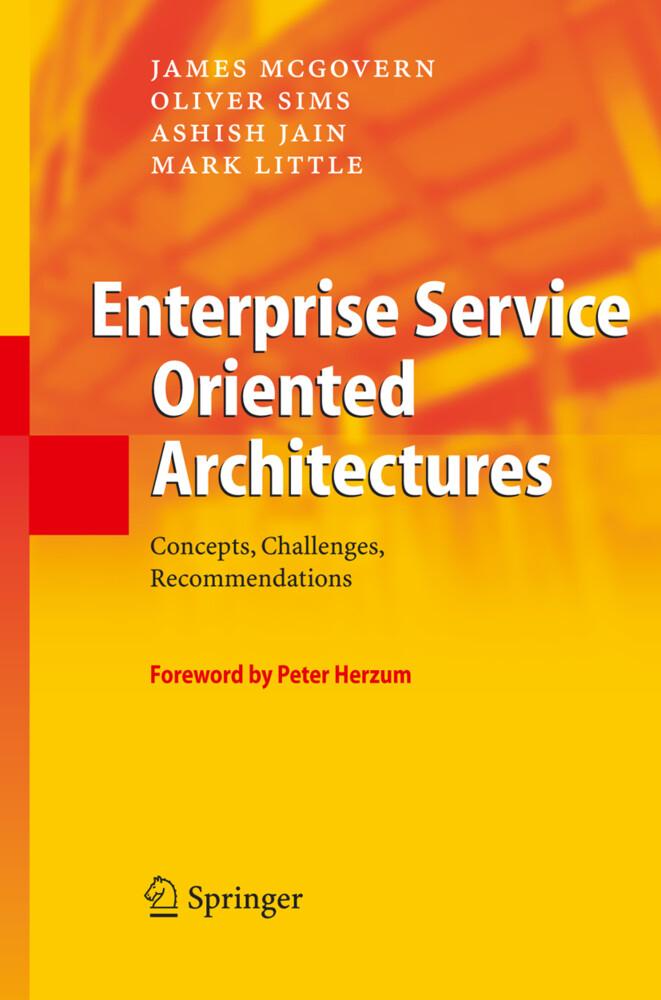 Enterprise Service Oriented Architectures als Buch