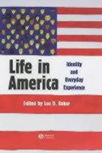 Life in America: Identity and Everyday Experience als Buch