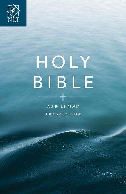 Text Bible-NLT-Economy als Taschenbuch