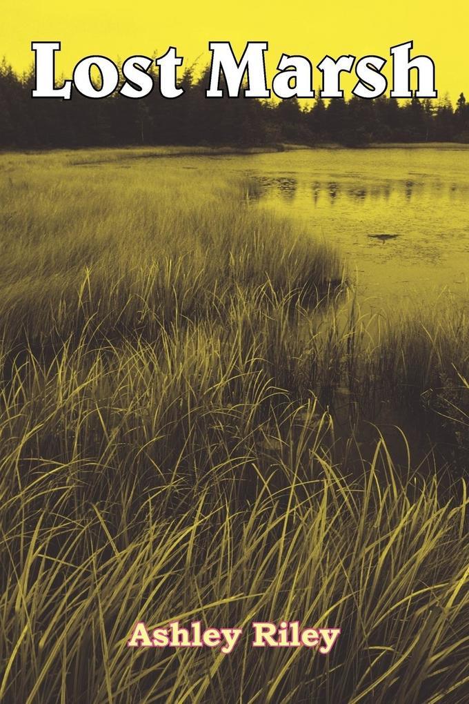 Lost Marsh als Taschenbuch